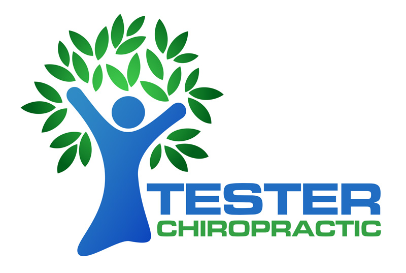 Tester Chiropractic Logo<div style='clear:both;width:100%;height:0px;'></div><span class='cat'>Logos and Printwork</span>