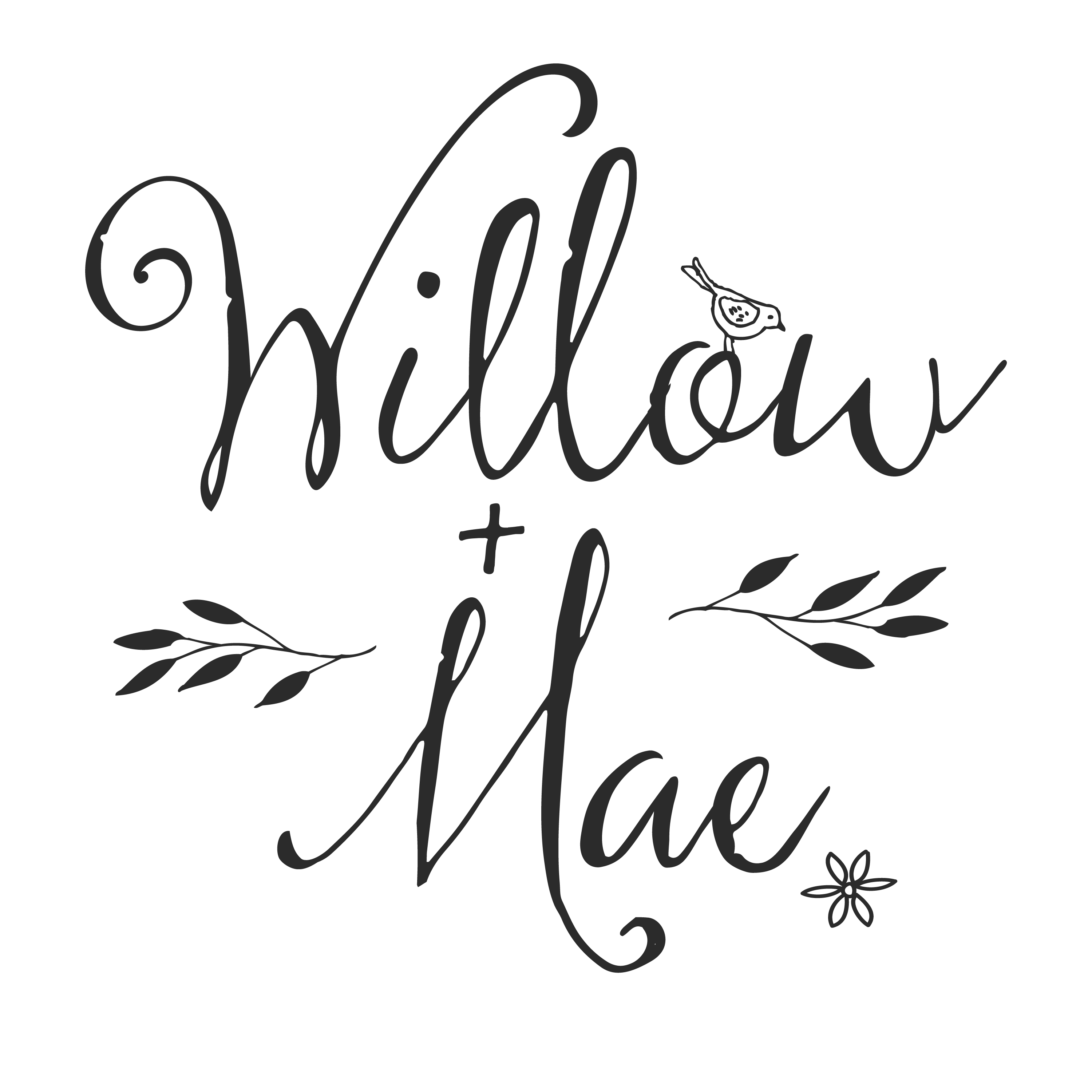 Willow + Mae Logo<div style='clear:both;width:100%;height:0px;'></div><span class='cat'>Logos and Printwork</span>